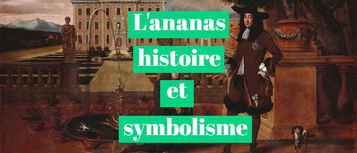 You are currently viewing ORIGINE ET HISTOIRE DE L'ANANAS