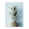 tableau sur toile demi ananas chalet bleu