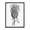 tableau avec gravure ananas