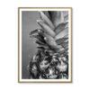 Tableau ananas noir et blanc