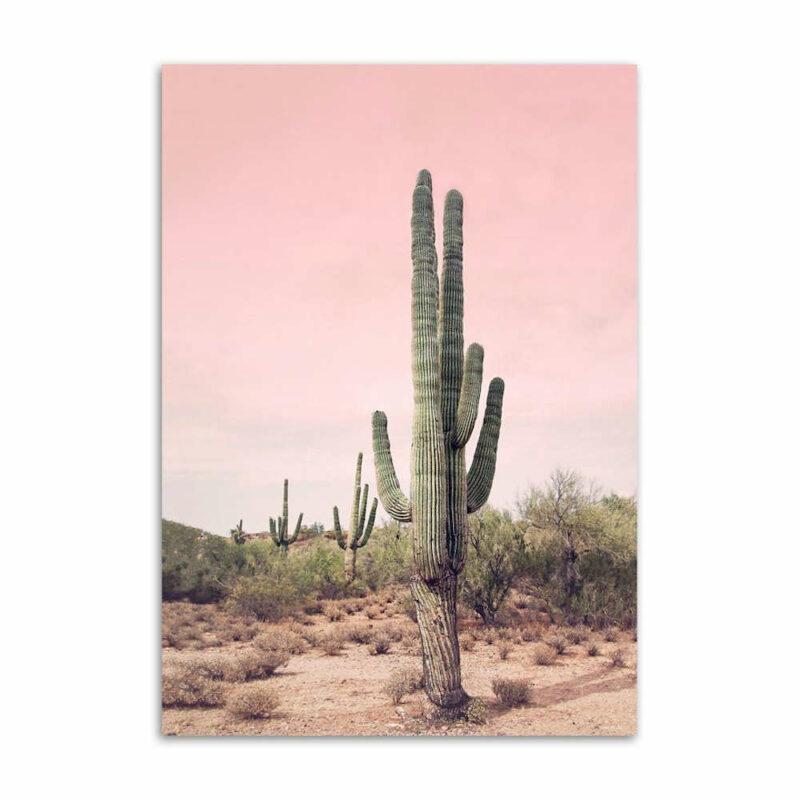 tableau ananas vicoria cactus dans le déserrt