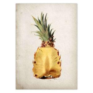 Tableau Ananas Vintage