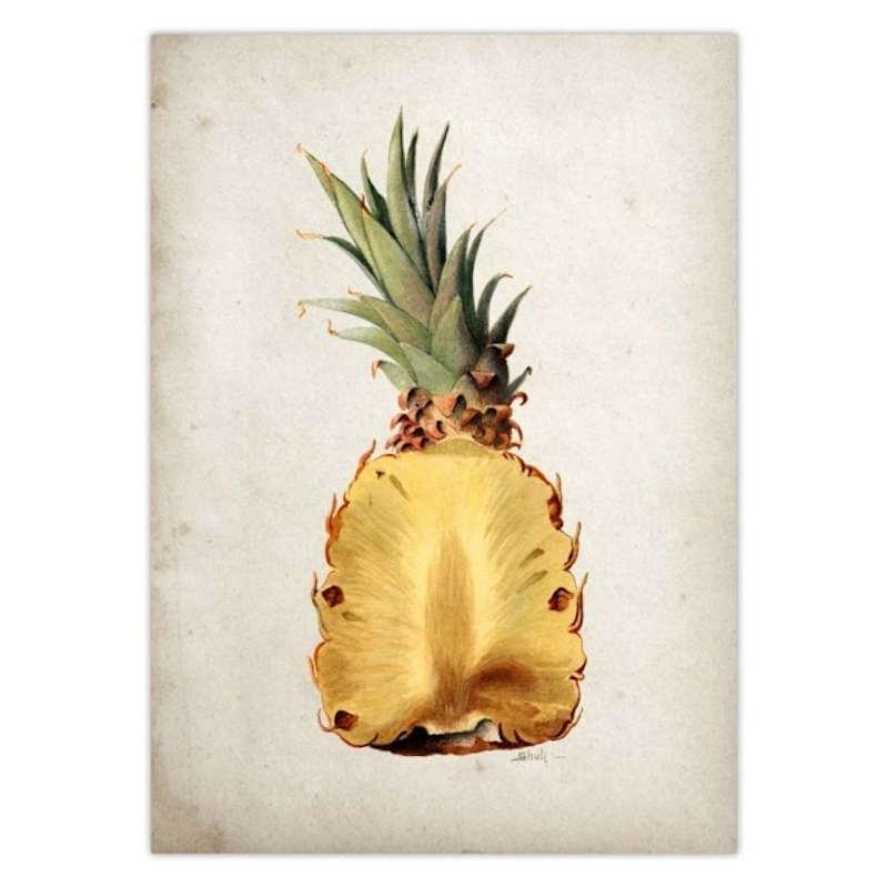 tableau sur toile ananas vintage coupe